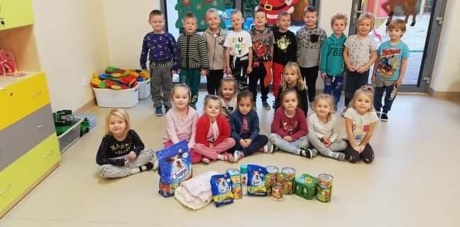"""Zbiórka darów dla Fundacji """"Animalsi"""", Schroniska dla zwierząt w Kościerzynie"""